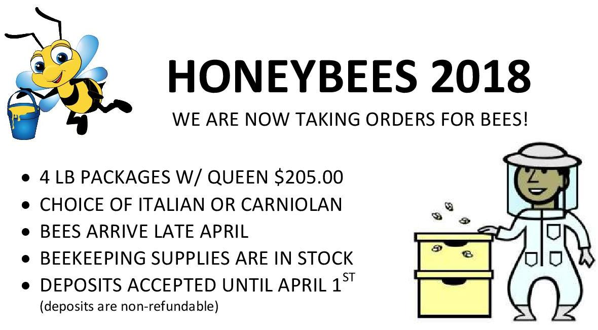 bees newsletter